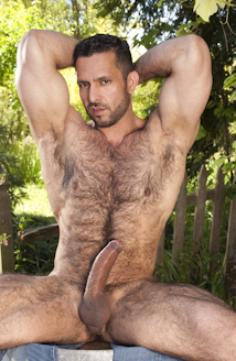 hairy boyz in the nude 11